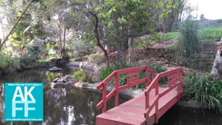 Japanese-Garden-bridge-